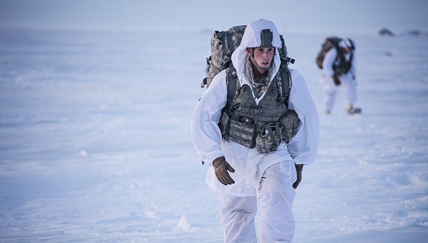 Soldier in the Arctic